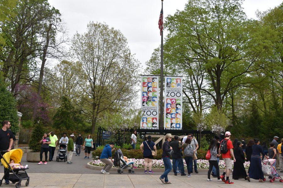 Image of visitors outside of the Smithsonian Zoological Park.