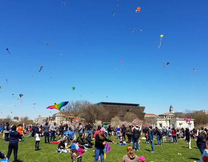 People flying kites at festival.